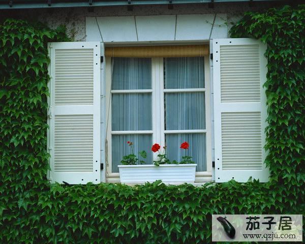 欧式民居阳台外窗绿化与美化
