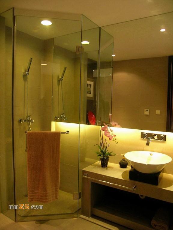 马桶与浴缸 一套现代中式住宅:中式风格,暖色调 一套现代中式住宅图片