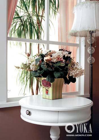 室内植物小景手绘图