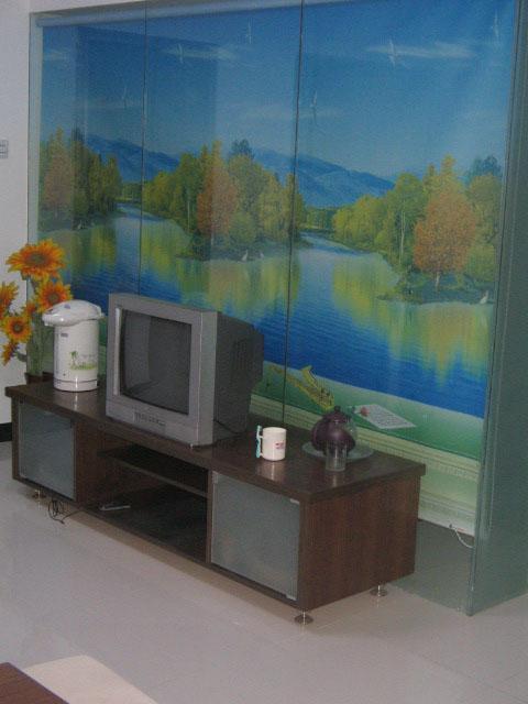 玻璃之屋:客廳電視機與背景畫